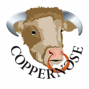 All Natural British Beef Jerky by CopperNose Smokery